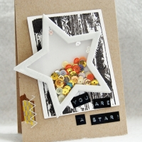 Send Love with a Star Theme Shaker Card