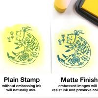 Beginner Guide: Mboss Clear in Matte Finish